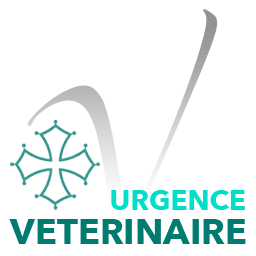 Urgences VETERINAIRES Toulouse